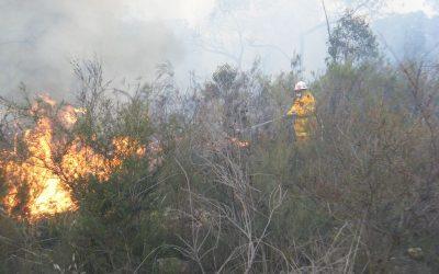 Bushfire Danger Period Commences