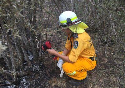 Limekilns Fire 2017 Amy finds hot spot