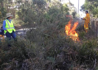 Eusdale Road Yetholme Prescribed Burn May 2018