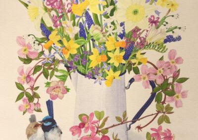Spring is Blue Wrens