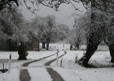 g-littleton-snow